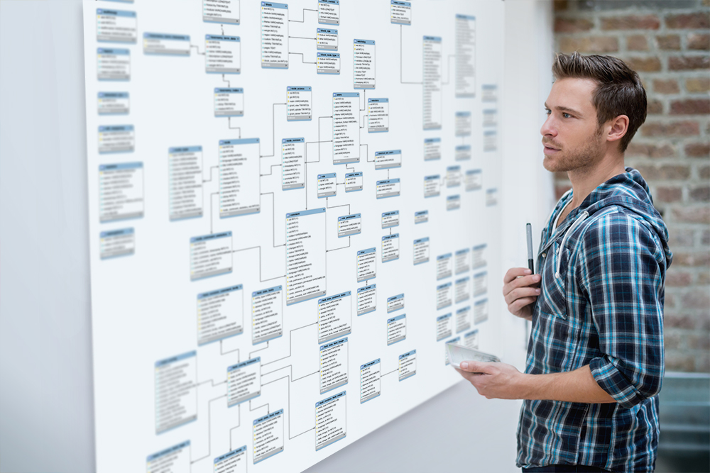 A data scientist looks at a traditional entity relationship diagram on a wall.